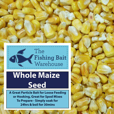 Whole Maize Seed, 1kg, 5kg, 20kg, Carp Fishing Particle, Tench, Bream  • 14.99£