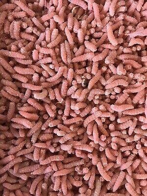 Live Maggots *pinkys* 25g 200+ Bait Wigglers Fishing Livefood Tackle (0.5-1cm) • 3.49£