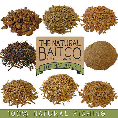 Dried Insects For Fishing Bait 100g - Maggots, Shrimp, Silkworm, Earthworm • 4.89£