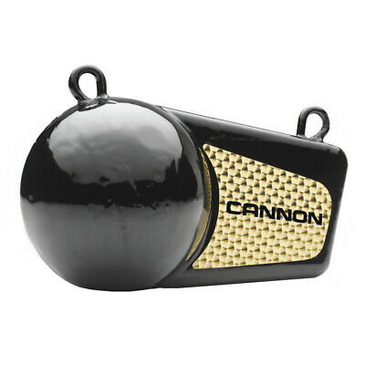Cannon 4lb Flash Weight • 29.33£