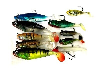 10 X Pike Fishing Assorted Shad Lures Soft Bait Fishing Shads • 15.39£