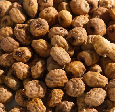 MALTBYS' STORES 1904 LTD 5kg TIGER NUTS FISHING BAIT • 14.99£