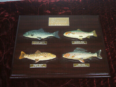 Game - A Genuine Fisherman's Tale - 4 Fish Shown On Plaque • 15£