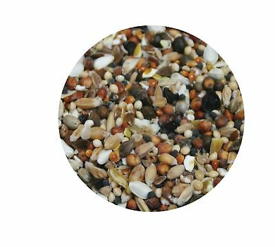 Copdock Mill Pigeon Conditioning Seed 12.5kg Fishing Bait Bulk Ingredients • 11.99£