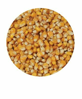 Copdock Mill Whole Maize 20Kg Poultry Food Pigeon Waterfowl Duck Goose Feed  • 14.19£