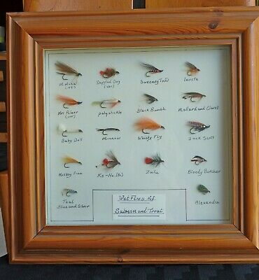 Vintage Collection Of Salmon And Trout Flies - Display - Framed • 19.50£