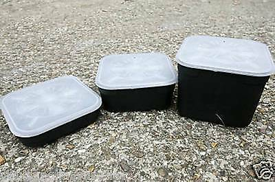 3 X Assorted  Standard Square Fishing Bait Boxes • 9.16£