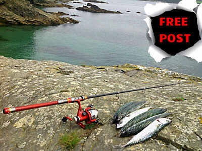 2.1 Metre Travel Spinning Rod, Sea Rod & Reel Inc, GREAT FOR TRAVELLING,CAMPING • 49.99£