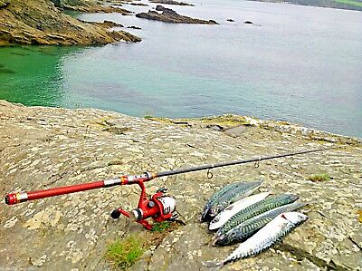 Carbon Travel Fishing Rod 2.1 M & Reel / Great For Spinning Or Float Fishing • 49.99£