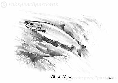 ATLANTIC SALMON Fly Fishing Art Drawing Print Picture Present Gift For Angler  • 7.99£