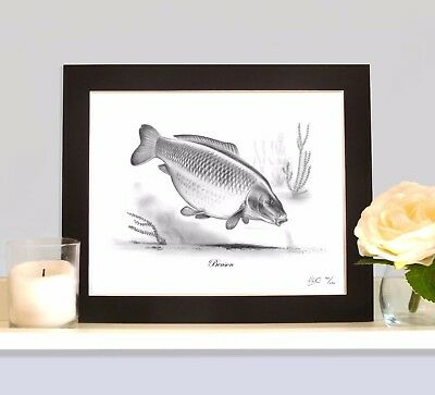 BENSON Legendary Carp Fishing Drawing MOUNTED Print Picture Rare Collectable  • 9.99£