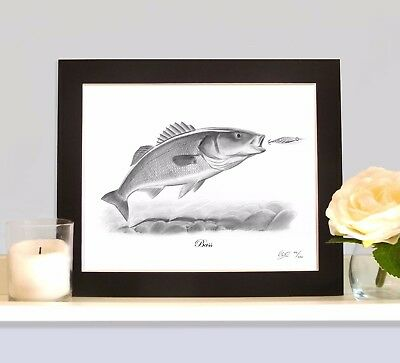 BASS Sea Fishing Fish Art Print Drawing Picture MOUNTED Present Gift For Angler • 9.99£