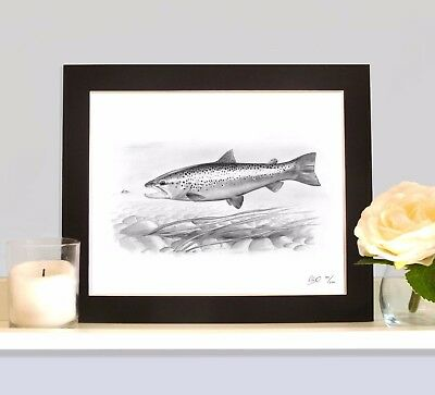 BROWN TROUT Fly Fishing Art Print Picture Present For Trout Angler Fisherman • 9.99£