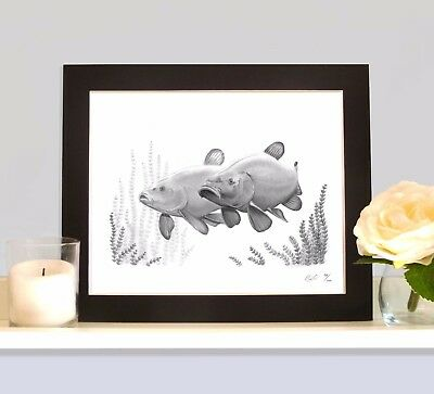 TINCAS CRUISING Art Picture Present For Tench Angler Fishermans Man Cave Wall • 9.99£