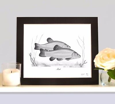 TENCH Art Print MOUNTED Picture Present For Tench Angler Fisherman  • 9.99£