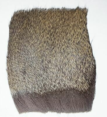 Top Quality Tanned Natural Deer Hair Patch For Fly Tying Minimum 3  X 3  • 3.65£