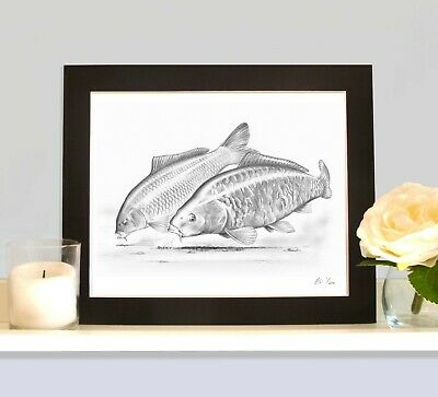 THE COMMON AND THE MIRROR Carp Picture Fishing Present Fish Art Drawing Print • 9.99£