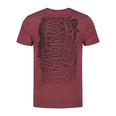KORDA Clothes (T-Shirts And Joggers) • 21.99£