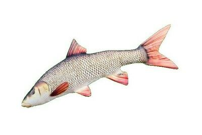 Gaby The Barbel Pillow • 22.99£