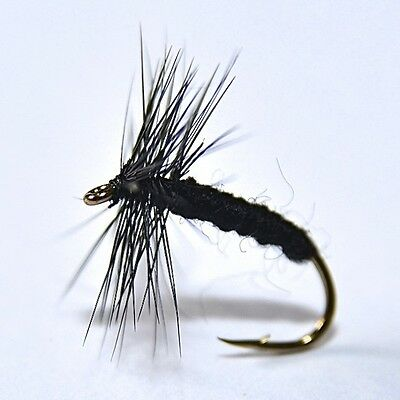 BLACK SPIDER Dry Fly Trout & Grayling Fly Fishing Flies By Dragonflies         • 4.68£