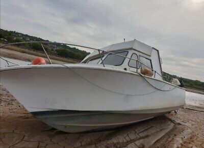 Seabird 30ft Fishing Boat Project Evinrude 250hp Outboard Grp • 2,550£