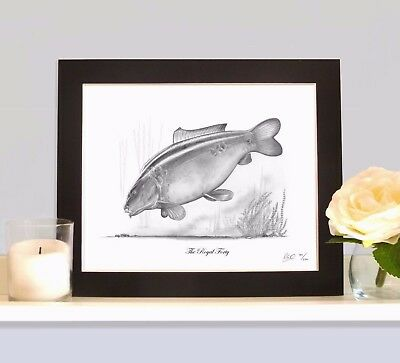 THE ROYAL FORTY Classic Legendary Carp Fishing Drawing MOUNTED Print Picture  • 9.99£
