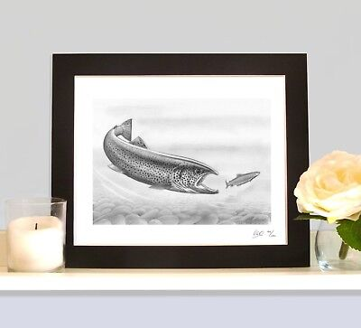 FEROX TROUT  Fly Fishing Game Art Print Drawing Picture MOUNTED Present Gift • 9.99£