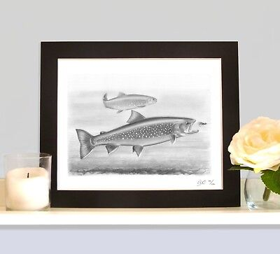 ARCTIC CHAR Fly Fishing Trolling Lake Nymph Fish Art Print Drawing Picture  • 9.99£