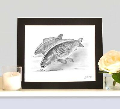 HEADS DOWN Underwater Carp Picture Fishing Art Drawing Present Gift For Angler • 9.99£