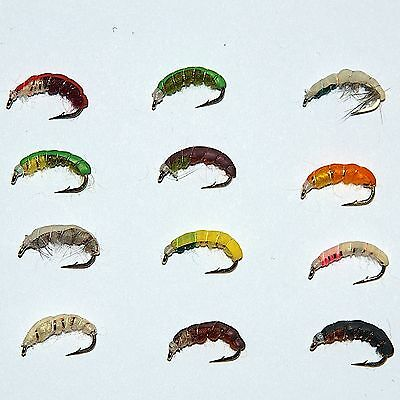 24 Weighted Czech Nymph Fly Fishing Flies Trout Grayling By Dragonflies  • 8.77£